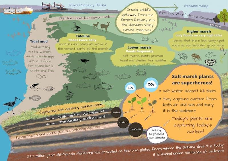 Salt Marsh Leaflet map