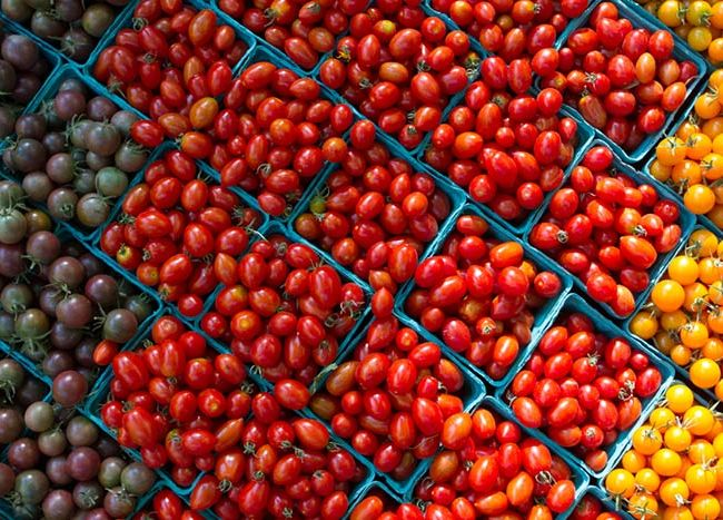 Mixed Tomatoes: Photo By Alan Weiner