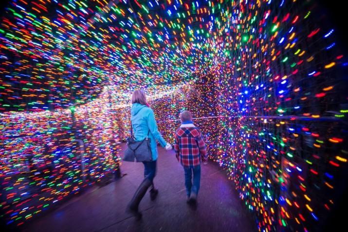Zoo Lights Portland Oregon 2017