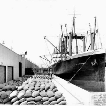 Loading hay, grain, and barley on the SS Lilian Luckenback in April of 1934.