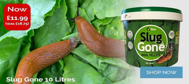 Slug Gone 10 Litres