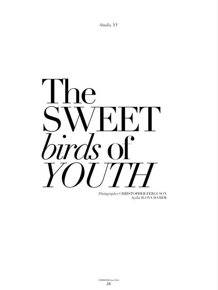 The Sweet Birds Of Youth by Christopher Ferguson for Stonefox Magazine