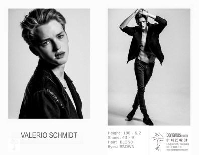 valerio_schmidt