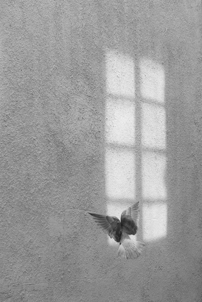 08 Secret window