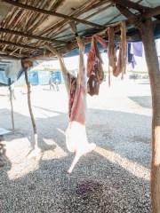 Italy, Calabria, Rosarno, 2015. A sheep slaughtered.