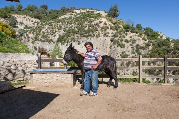 omenico is one of the 70 Italian operators, he's working from one year and four months for Aquilone cooperative which takes care of the donkeys that are used for the recycling collection. To help him there are three African guys and a men from Kurdistan.