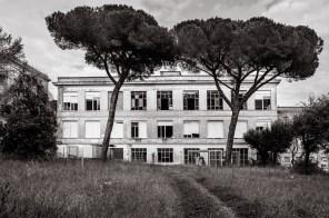 Alessandro_Romagnoli_Giuseppe_PEzza_positivemagazine_21
