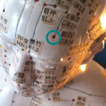 Gallbladder 14 Acupuncture Point