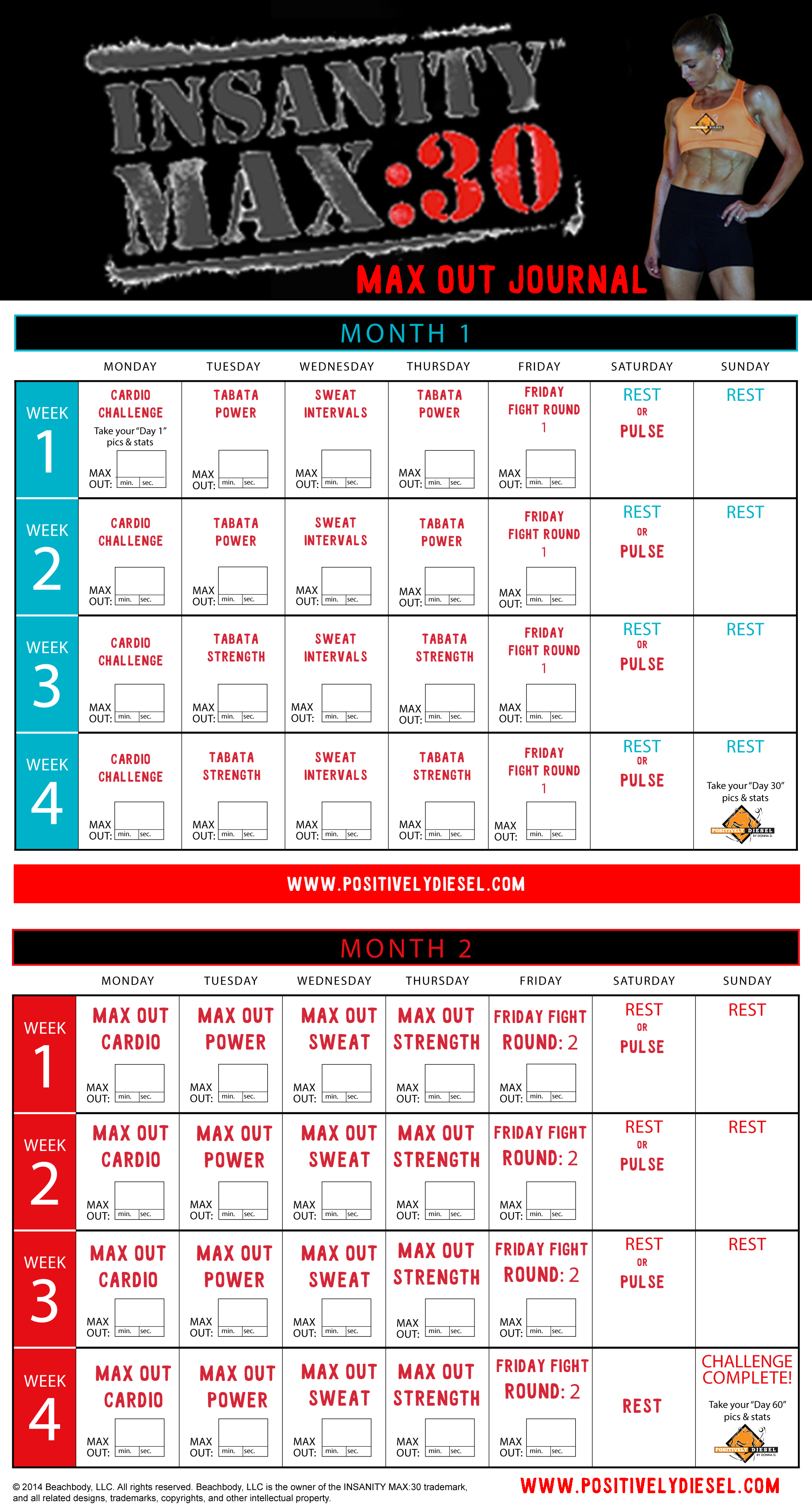Insanity Workout Sheets