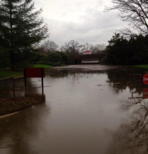 Flooding_at_The_Morton_Arboretum