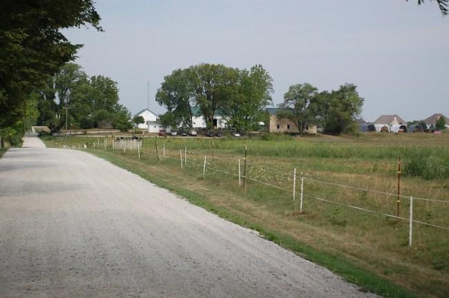 mcdonald-farm