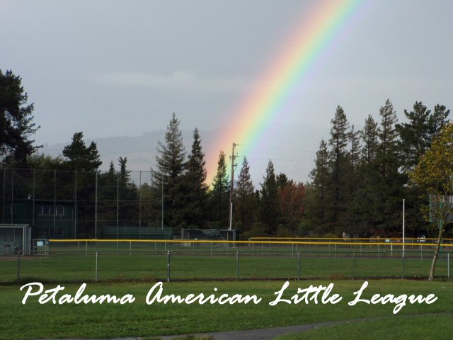 Petaluma American Little League Lights Up
