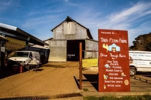 Tara Firma Farm Photos-2 Resized.jpg