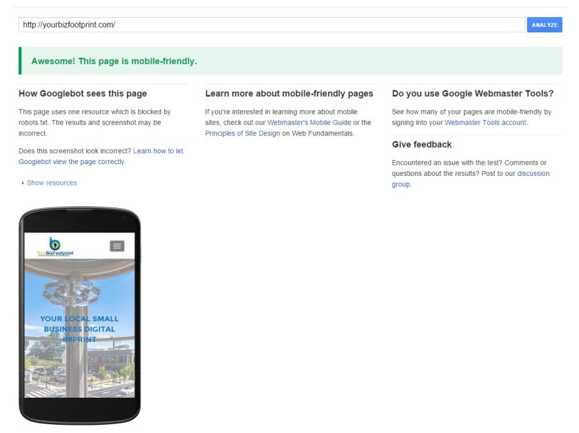 Google Bot Passes YourBizFootprint Website