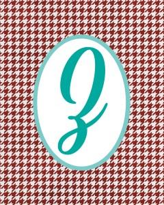 Red Monogram Z