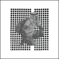 UlrikaSpacek_albumparanoia
