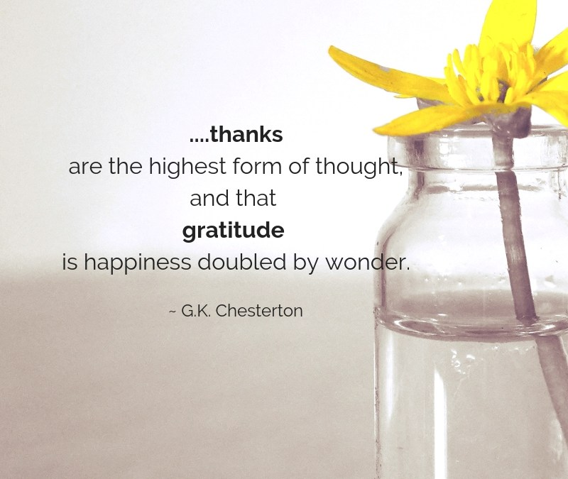 Gratitude – Happiness doubled by wonder.