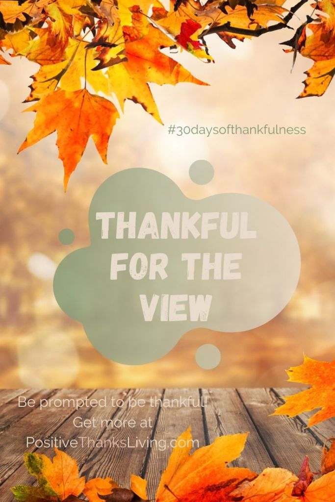 Practice your ability to be thankful - to be filled with gratitude! Here's the first of thirty prompts: Thankful for the View -- Want the details?