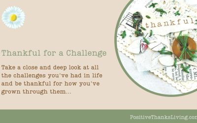 Thankful for a Challenge