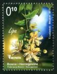 Medonosne Biljke Lipa