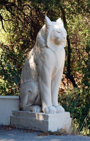 Los Gatos cat statue