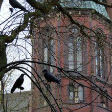 Church in Oldenburg