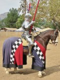 Tournament of the Phoenix: Jousting, Anyone?