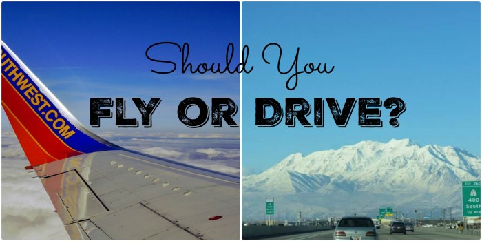 Should You Fly or Drive