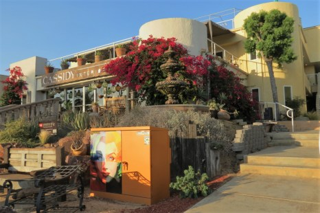 Dine and Do in Solana Beach