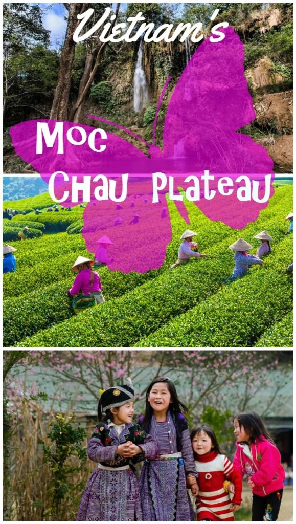 Moc Chau