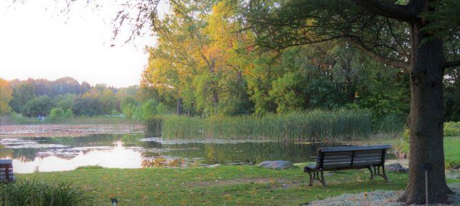 Montreal Botanical Garden & Gardens of Light