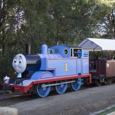 Roaring Camp Railroad