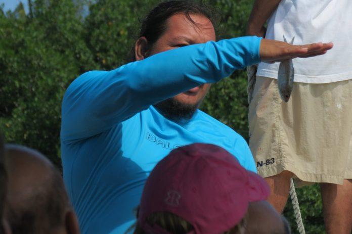 Belize, feeding a tarpon