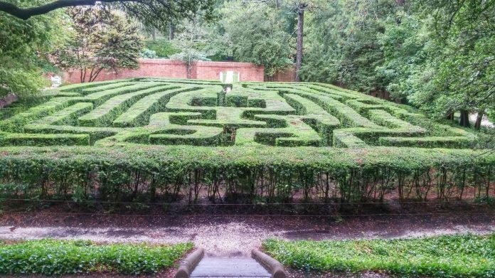 Colonial Williamsburg maze