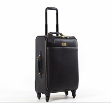 luggage spinner carry-on