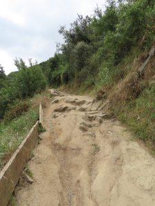 Escondido hikes