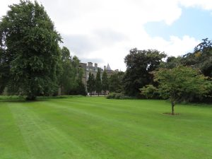 manicured lawns