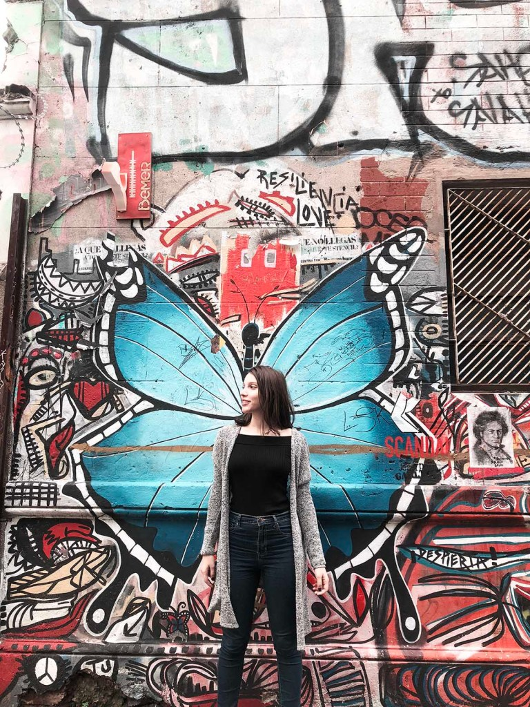 Butterfly wings mural in Buenos Aires