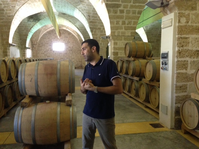 Puglia Fall 2014 - Wine Liveli