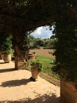Warm & welcoming Masseria Provenzani