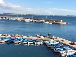 Gallipoli...by the sea