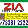 Zia Pest Control 7338122228   high-level Service Treatment 1200.00   1838   free Classified   Free Advertising   free classified ads