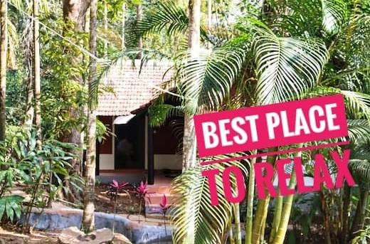 Best Homestay Resort in Coorg at an affordable price | free Classified | Free Advertising | free classified ads
