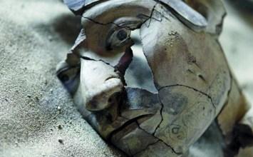 Η σύγχρονη αρχαιολογία φωνάζει: Σταματήστε τις ανασκαφές !