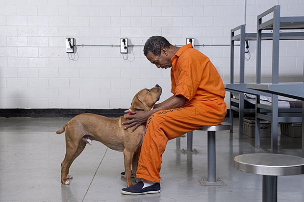 ATLANTA,GA - APRIL 27, 2015: Canine Cellmates program at the Fulton County Jail for Atlanta Magazine in Atlanta, Georgia. (Photo by Kelly Kline)