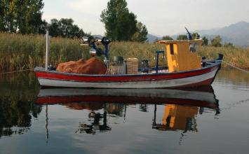 To παραδοσιακό ψάρεμα της αθερίνας στην Τριχωνίδα