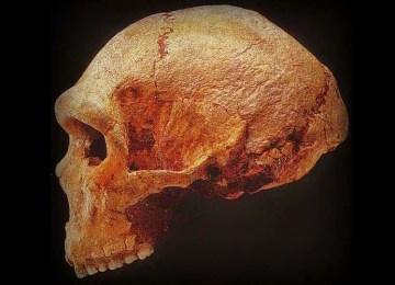 Οι πρώτοι κάτοικοι του Ελλαδικού χώρου: Κυνηγοί, τροφοσυλλέκτες και… ευτυχείς;
