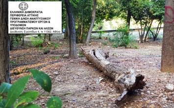 Η απάντηση της Περιφέρειας Αττικής στο αίτημα της «Πρωτοβουλίας Κατοίκων» για αντιπυρικά μέτρα