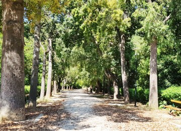 To Πεδίον του Άρεως ανήκει και πρέπει να ανήκει στον Δήμο Αθηναίων