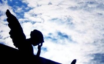 Φτερό αγγέλου (6)